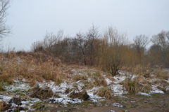 Пляж зимы Стоковые Фотографии RF