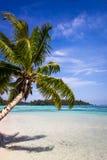 Пляж и лагуна рая тропические в острове Moorea Стоковое фото RF