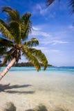 Пляж и лагуна рая тропические в острове Moorea Стоковое Изображение