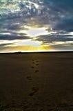 Пляж и заход солнца Стоковое Изображение