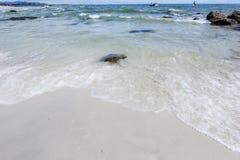 Пляж и море с небом Стоковое Изображение RF