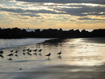 Пляж и небо захода солнца New York Стоковые Фото