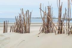 Пляж и песчанные дюны стоковые изображения