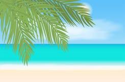 Пляж и тропический ландшафт моря также вектор иллюстрации притяжки corel Стоковые Фото