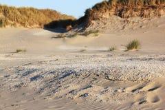 Пляж и дюны на острове Ameland, Голландии Стоковое Изображение