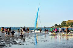 Пляж и windsurfers моря Стоковая Фотография