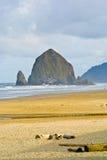 Пляж карамболя, Орегон Стоковые Фото