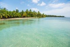 Пляж карибского моря с пальмами в Панаме Стоковая Фотография RF