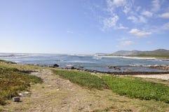 Пляж Кейптаун кораблекрушением Стоковые Фото