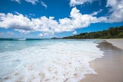 Пляж кокосов Anse тропический, остров Digue Ла, Сейшельские островы Стоковая Фотография