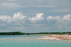 Пляж кокосов Cayo, Куба Стоковые Изображения RF