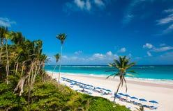 Пляж крана Стоковое фото RF