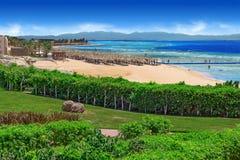 Пляж Красного Моря и тропического сада Стоковые Фото