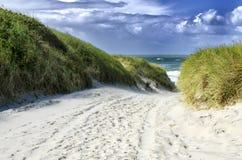 пляж к путю Стоковые Изображения RF