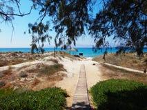 пляж к путю стоковое фото