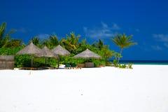 Пляж Мальдивов стоковые фотографии rf