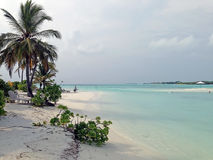 пляж Мальдивы тропические Стоковое фото RF