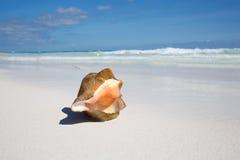 Пляж Мексика Tulum карибский Стоковое фото RF