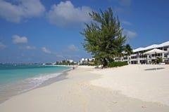 Пляж 7 миль, Каймановы острова Стоковое Изображение RF