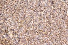 Пляж моря камешка подводный Стоковые Фото