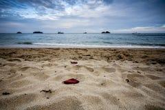 Пляж моря - океана с песком на переднем плане стоковое фото rf