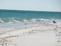Пляж Наварры Стоковое фото RF