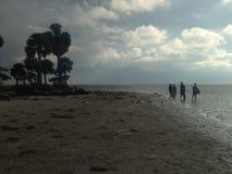 пляж наслаждаясь людьми Стоковое Изображение