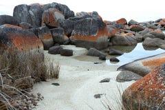 Пляж на заливе Binalong, Тасмании Стоковое фото RF