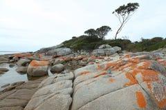 Пляж на заливе Binalong, Тасмании Стоковые Фотографии RF