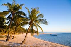 Пляж на зоре стоковые изображения rf