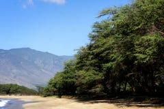 Пляж на Мауи, Гаваи Стоковое Изображение