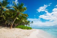 Пляж на острове Saona в Вест-Инди Стоковая Фотография