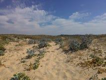 Пляж, небо и вода Стоковые Изображения