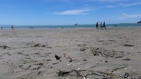 Пляж Нелсон Новой Зеландии Стоковая Фотография