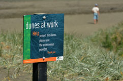 Пляж Новая Зеландия Muriwai восстановления дюны Стоковое Изображение