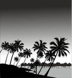 Пляж ночи бесплатная иллюстрация