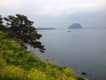 Пляж обозревает Jeju Стоковое Фото