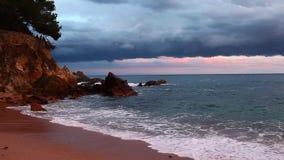 Пляж океана видеоматериал