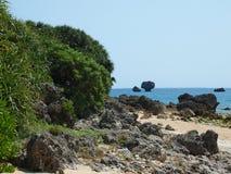 Пляж Окинавы Стоковые Фотографии RF