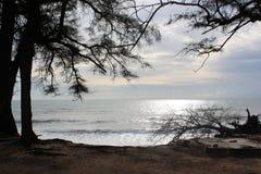 Пляж около захода солнца Стоковое Изображение