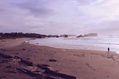 Пляж Орегона прибрежный Стоковая Фотография RF