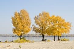 пляж осени Стоковые Фото