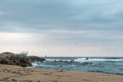 пляж осени Стоковое фото RF