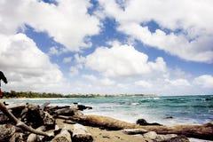 Пляж острова в Тихом океане Стоковое Изображение
