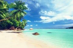 Пляж острова Каталины в Доминиканской Республике стоковые изображения rf