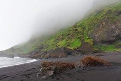 Пляж отработанной формовочной смеси - Dyrholaey, южная Исландия Стоковое Фото