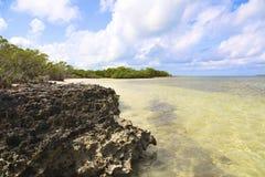 Пляж от Кубы Стоковое Изображение RF