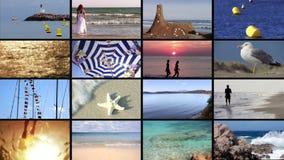 Пляж отдыхает монтаж видеоматериал
