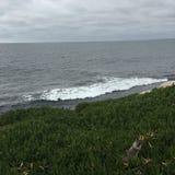 пляж пасмурный стоковые изображения