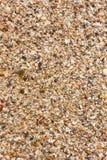 Пляж песка Стоковые Изображения